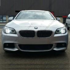 BMW F10 D1S XENON AMPULÜ PHOTON  6000K